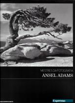 ANSEL ADAMS-MESTRES DA FOTOGRAFIA