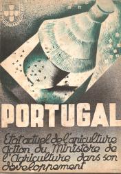 PORTUGAL-ÉTAT ACTUEL DE L´APICULTURE-ACTION DU MINISTÉRE DE L´AGRICULTURE DANS SON DÉVELOPPEMENT